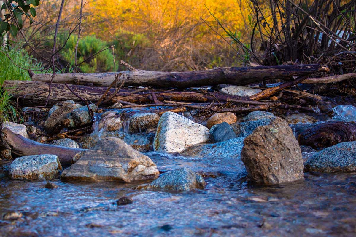 River crossing - boulders and logs