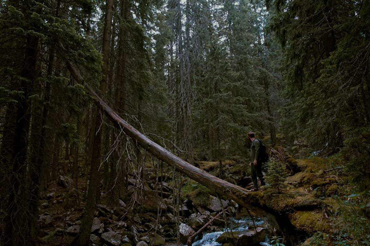Hiker crossing forest stream