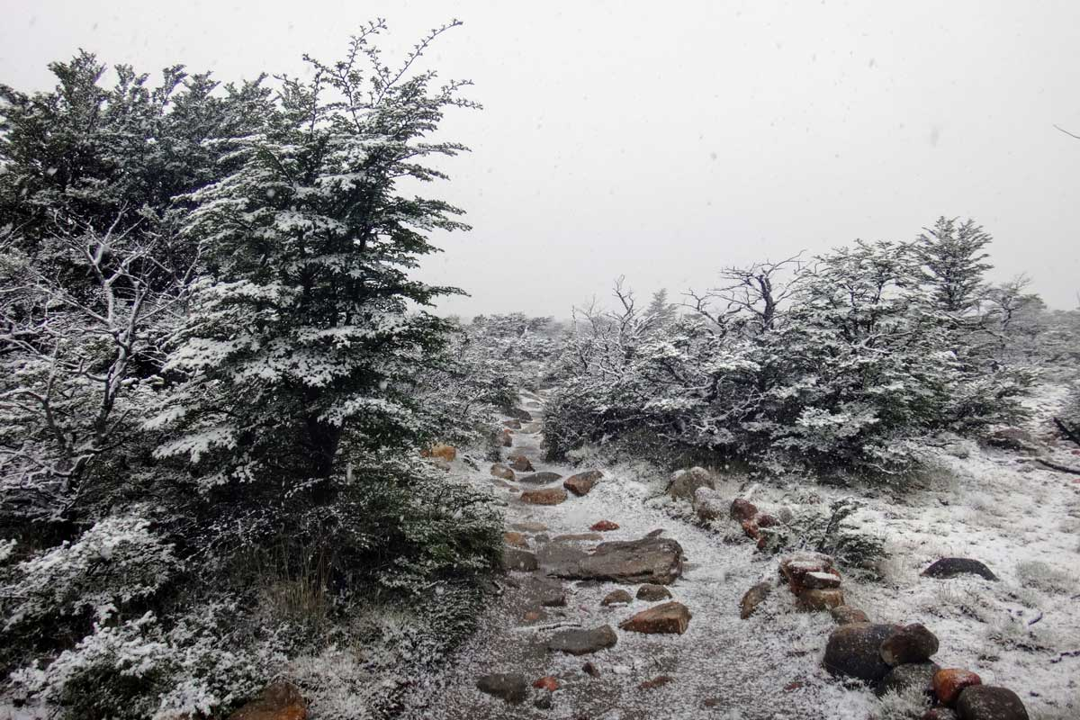 Snow dusted rocky hiking path