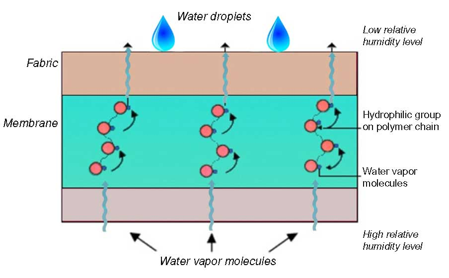 Hydrophilic structures moisture transmission diagram