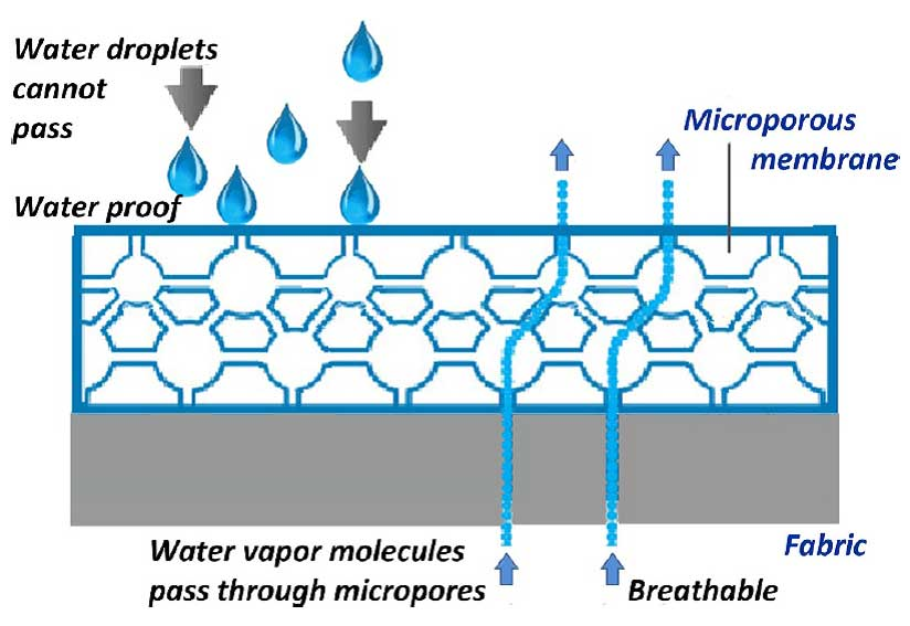 Microporous structure and vapor transfer diagram