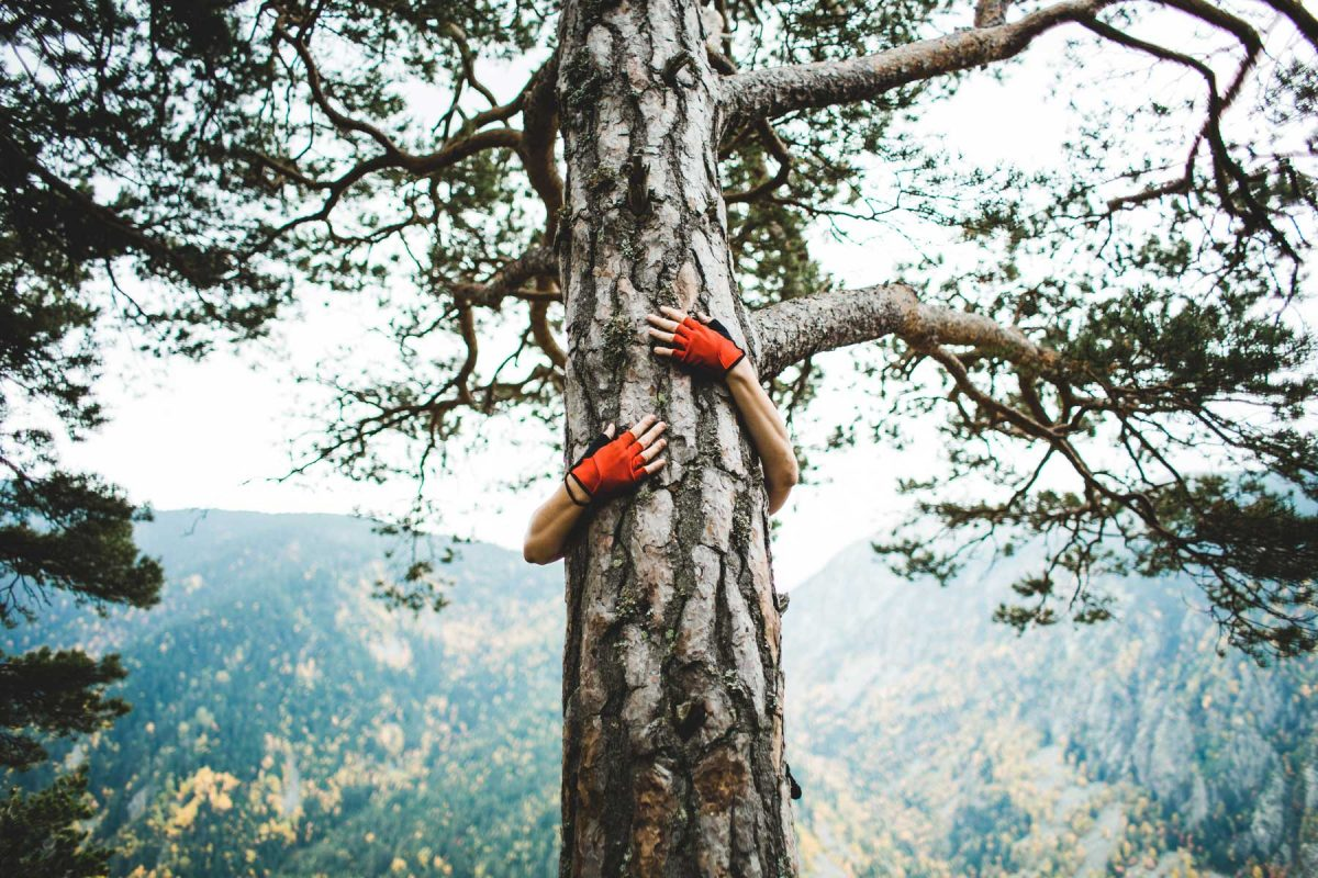 Tree hugger with fingerless gloves