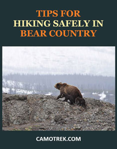 Tips for hiking in bear country