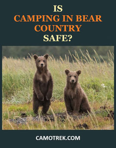 Is camping in bear country safe