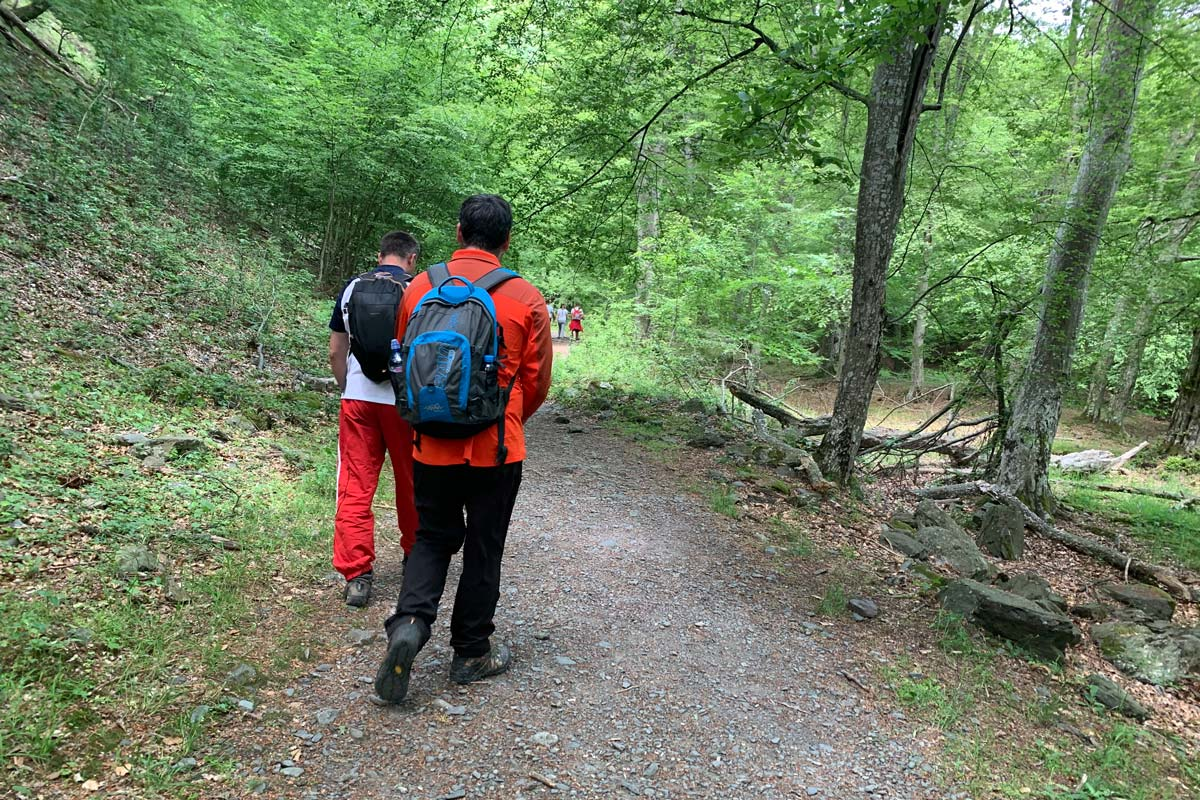 Hiker with Helly Hansen Phantom 2.0 on the trail